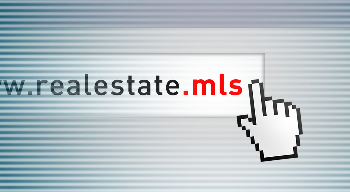 Top-level domain .mls