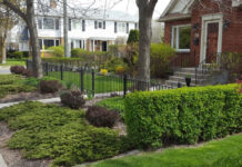 Territorial reinforcement provides defined property lines and clear distinctions between public, semi-private and private spaces.