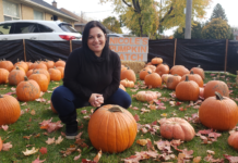 Nicole Beinert with Royal LePage Signature Realty in Toronto poses in her Pumpkin Patch for Shelter.